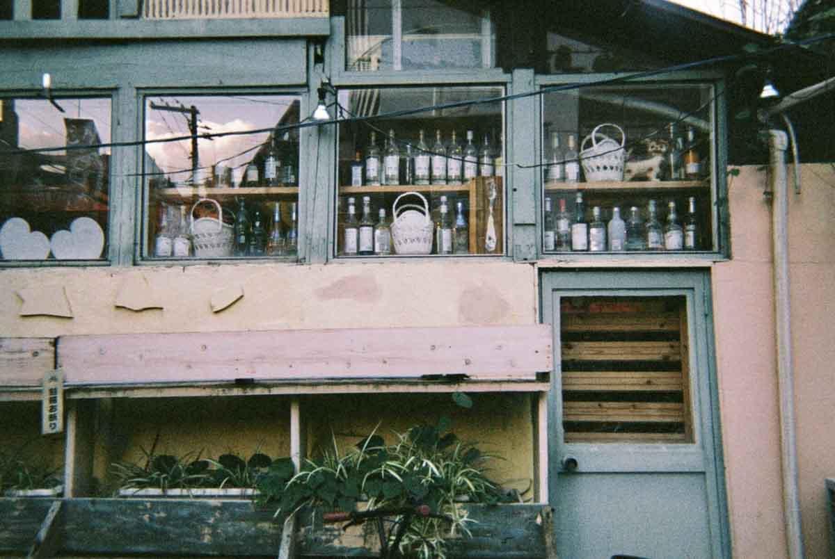 西田早紀のフィルム写真