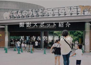 撮影スポット紹介