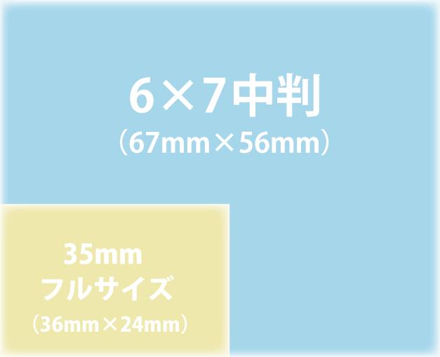 中判と35mmの違い