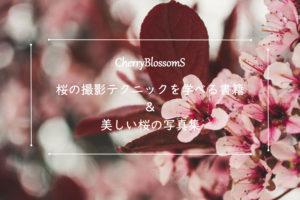『桜の撮影テクニック』を学べるおすすめの書籍&参考にしたい桜写真集